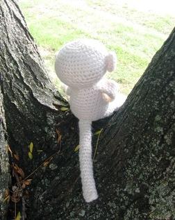 Mesmer_the_monkey_back