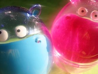 Hippo_twins