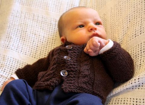 Contemplating His New Cardigan